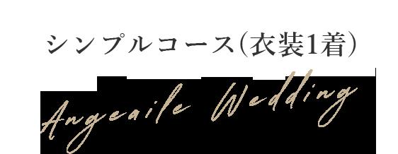 シンプルコース(衣装1着)